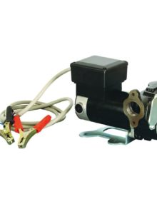 Dual Voltage 12/24V Diesel Pump