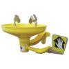 Floor Mounted Shower and Eyewash